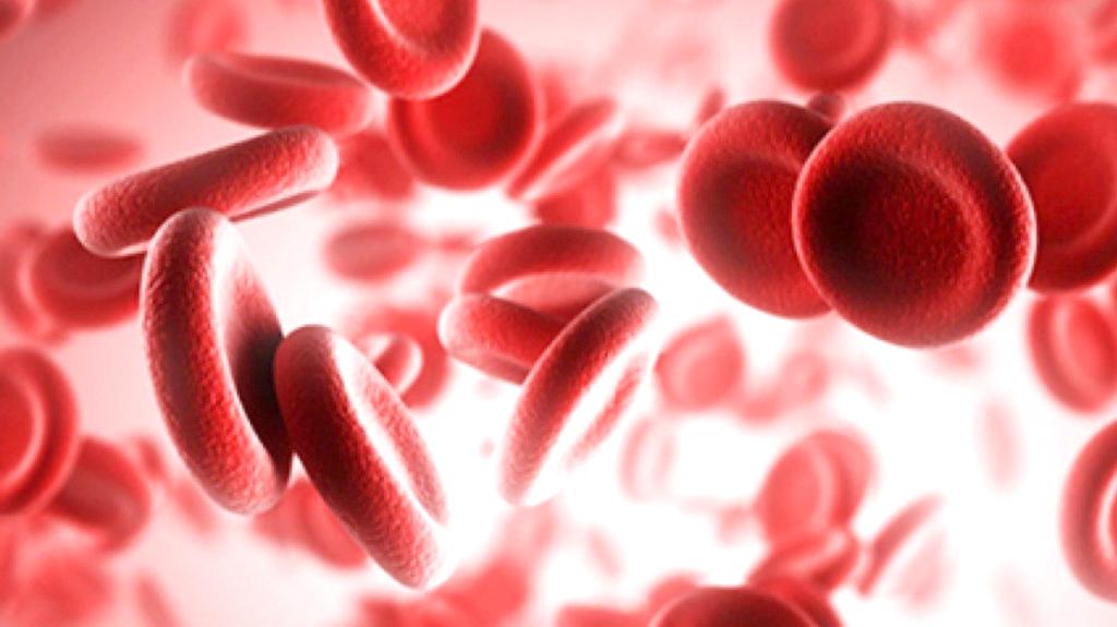 causes anemia